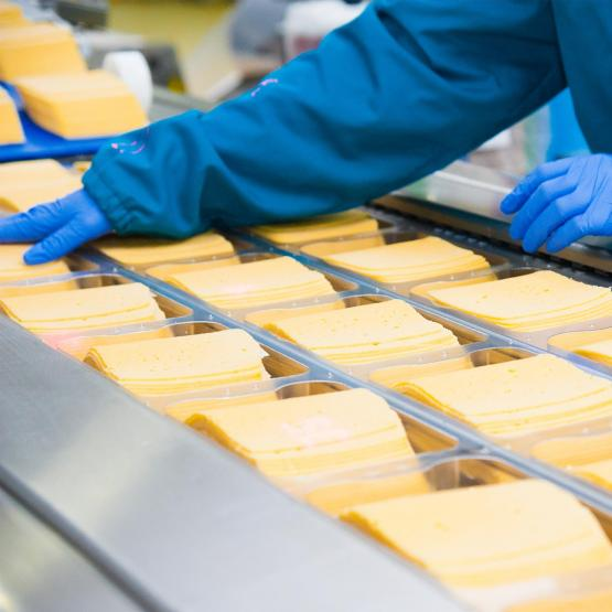 worker inspecting cheese slices on a conveyor belt